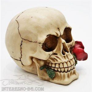 Интересен подарък-череп с роза