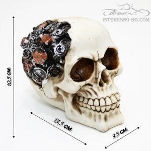 интересен подарък-Vintage череп
